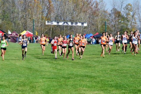 Girls cross country season ends at State