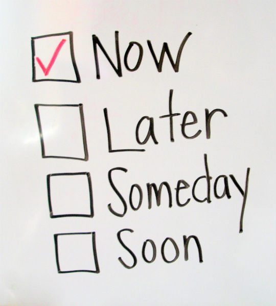 the rules of procrastination essay 10 rules for effective procrastination  read said essay to a friend 9 stare longingly out the window and contemplate what you could do if you were better at efficiently managing your time.
