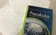 Benefits of taking Precalculus and Calculus