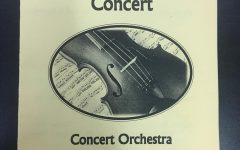 Orchestras hold enchanting concert